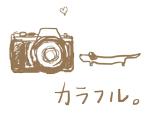 スケルトン-カラフルカメラ