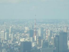 スカイツリーから観た東京タワー