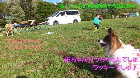 12050408_1.jpg