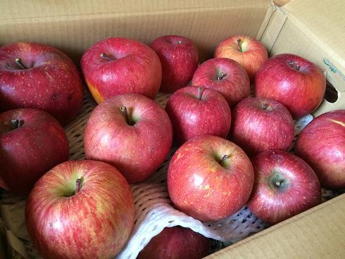 信州美人リンゴさん♪