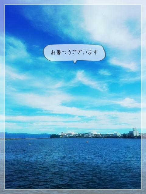 忙しい夏 01