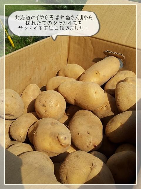 モコちゃん来る03