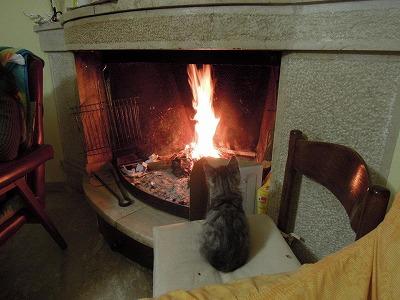 暖炉(カッシーノ)