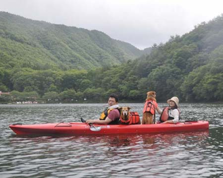 kayaku40_large.jpg