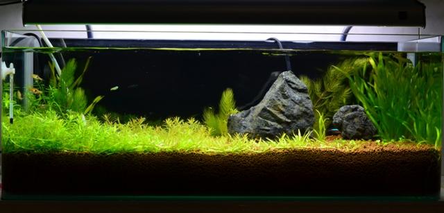 20121011 (3)