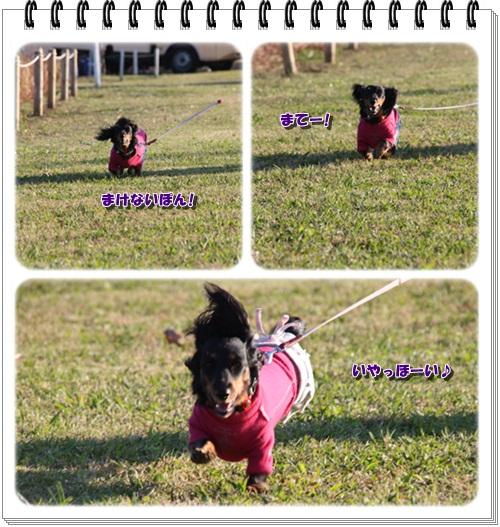 crea121126-11.jpg