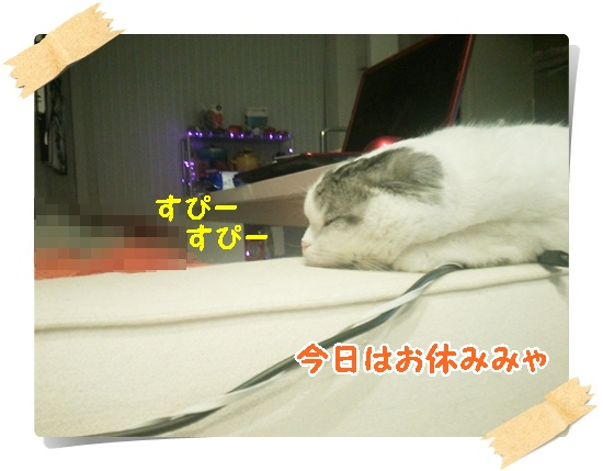 1_20130530074447.jpg