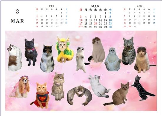 カレンダーB62