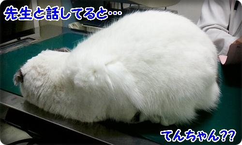 2013_03_23_14_12_11.jpg
