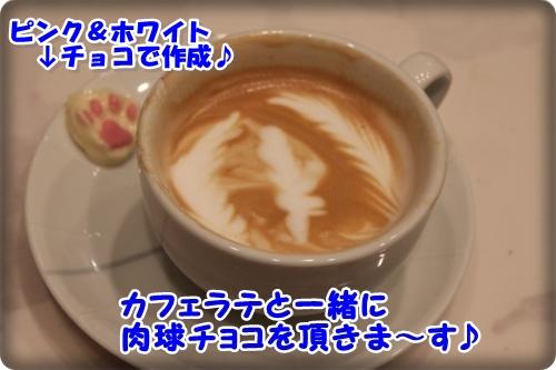 3_20130313213846.jpg