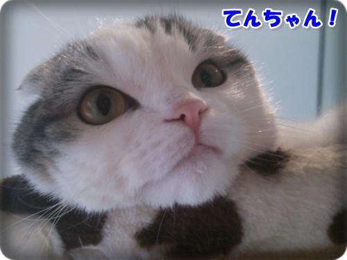 DSC_0060-002.jpg