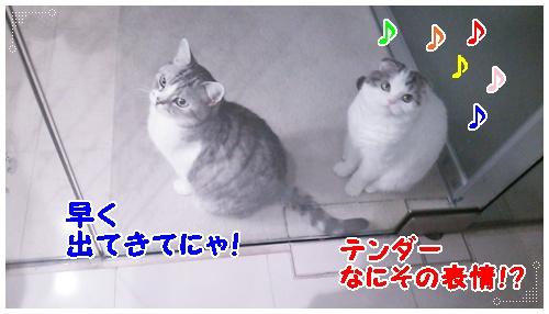 DSC_0189.jpg