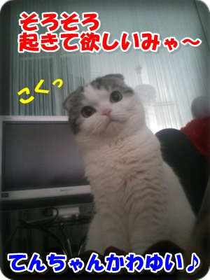 DSC_0297-002_20130713161008.jpg