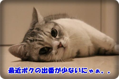 IMG_0192-010.jpg