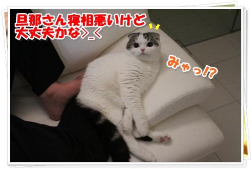 IMG_3105-009.jpg