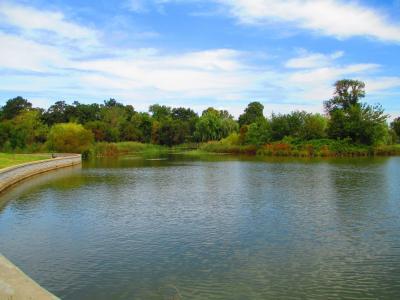 Ptterson Park①