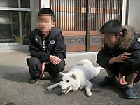 20121225yuzu11