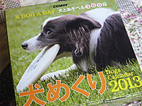 2012_0917001