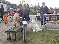 2011_1120060_3