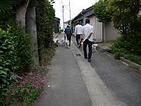2011_0605011