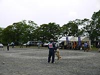 2011_0522017