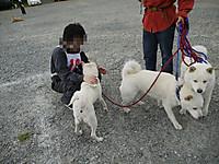 2011_0522012