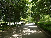 2011_0521046