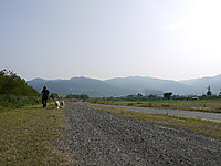 2011_0521052