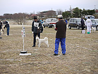 2011_0403008