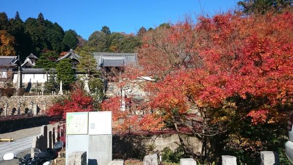 2014-11-30_0250.jpg