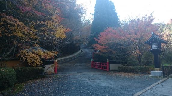 2014-11-30_0264.jpg