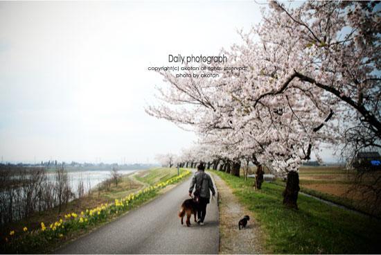 10_20120521192059.jpg