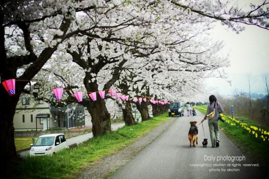 11_20120521192059.jpg