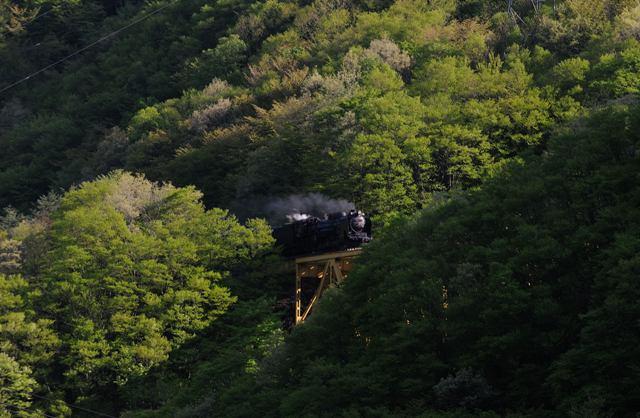 釜石線 D51498 陸中大橋
