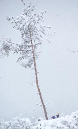冬が始まる15
