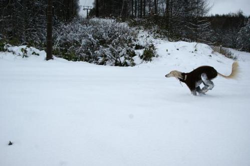 思いがけずの雪遊び5