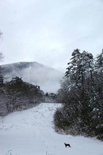 思いがけずの雪遊び6