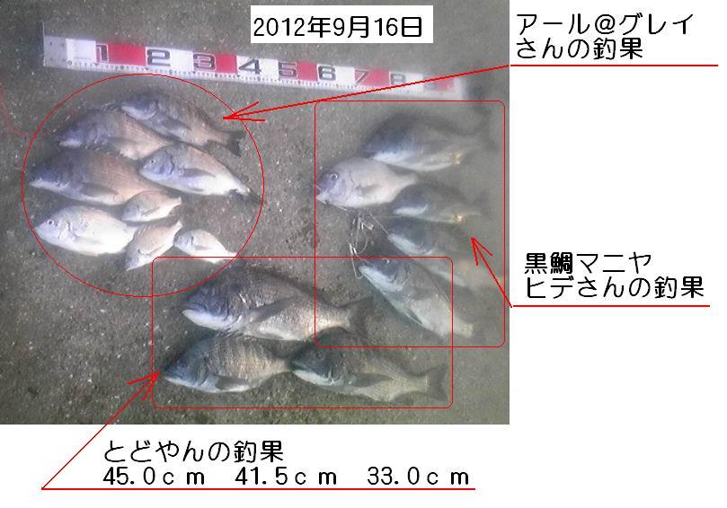 20120916jyanohirecyouka.jpg