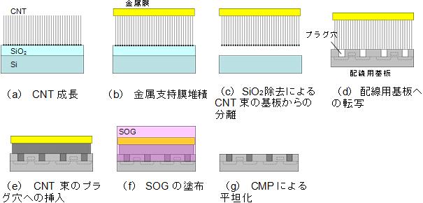 AIST_CNT_lineprocess_image.png