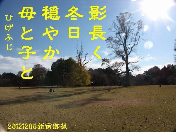 1206fuyuku-10.jpg