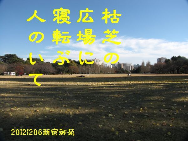 1206fuyuku-11.jpg