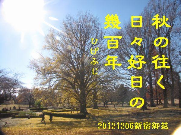 1206fuyuku-13.jpg