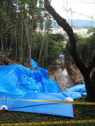 日田洪水1