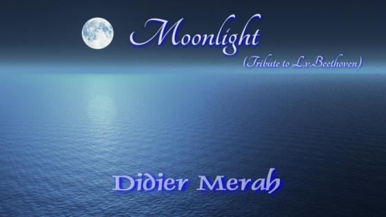 Moonlight_560x315.jpg