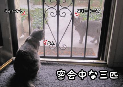 trio_01252013-01.jpg