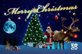 2012-クリスマス02