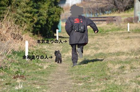 1_20130110002612.jpg