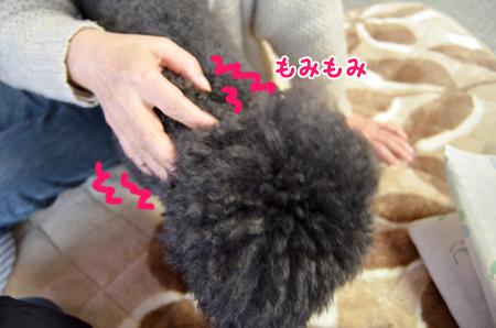 1_20130120234158.jpg