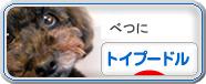 にほんブログ村-犬ブログ-ト