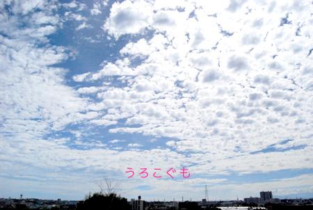 DSC_5726_20120906011744.jpg